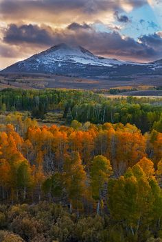 Tempest of October by Mark Geistweite, via 500px  Highway 395 just north of Conway Summit