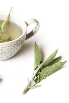 Verse salie-gember thee