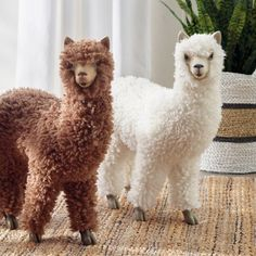 Love your llamas!  Guests at your home will hardly be able to contain their surprise and delight at first sight of our exclusive Wooly Llama figures. Realistic design with lots and lots of fluffy faux fur. Proportioned for easy placement and display in groups.  Add a touch of character in a simple, fun, and extraordinary way. Soft, textural accent adds warmth. Lightweight enough to reposition whenever the spirit strikes. Resin body with lifelike polyester faux fur. Imported. A Grandin Road exclu Baby Llama, Cute Llama, Yorkshire, Llama Alpaca, Grandin Road, Cute Baby Animals, Llamas, Cute Babies, Creatures