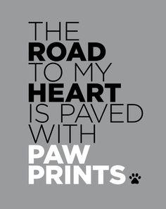 The Road to My Heart is Paved With Paw Prints (Gray) Art Print - Funny Dog Quotes - The Road to My Heart is Paved With Paw Prints (Gray) Art Print The post The Road to My Heart is Paved With Paw Prints (Gray) Art Print appeared first on Gag Dad. I Love Dogs, Puppy Love, Cute Dogs, Adorable Puppies, Cat Quotes, Animal Quotes, Vet Tech Quotes, Dachshund Quotes, Dog Quotes Love