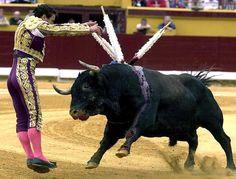 Wo Mensch und Tier aufeinander losgehen: Stierkampf im spanischen Burgos. (Archiv)