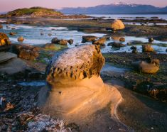 Heron Rocks, Hornby Island, GULF ISLAND, British Columbia, Canada   by Adam Gibbs