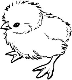 Chick Colouring image