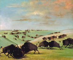 Buffalo by George Catlin | Buffalo Bulls Fighting in Running Season, Upper Missouri by George ...