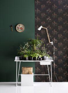 Dark Green walls via simply grove Interior paint color inspiration more on www. Interior Styling, Interior Decorating, Interior Paint, Green Bedroom Decor, Dark Green Walls, House Design Photos, Beautiful Interior Design, Wall Colors, Colorful Interiors