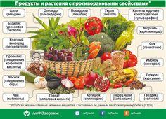 Еда будет лекарством. Какие продукты обладают противораковыми свойствами?…