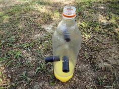 Αυτοσχέδιες οικολογικές παγίδες για έντομα Drink Bottles, Outdoor Power Equipment, Drinks, Plants, Gardening, Ideas, Permaculture, Drinking, Beverages