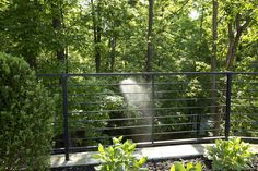 Natural Mosquito Control System Basics: Mosquito Misting #GoodbyeMosquitoes #HelloYard