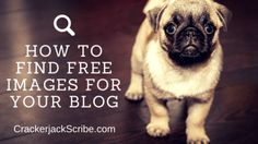 How to Find Free Images for Your Content Marketing