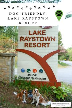 Dog-friendly cottages and resorts in Pennsylvania. Learn why Lake Raystown Resort is a great pet-friendly accommodation while traveling with a dog. via Travel T Usa Travel Guide, Travel Usa, Travel Tips, Travel Packing, Travel Guides, Pet Travel, Family Travel, Dog Friendly Cabins, Pet Friendly Accommodation