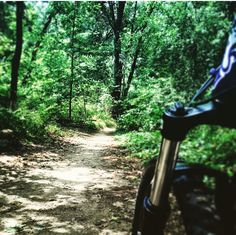 Into the woods #mtb #mountainbiking #trail #diamondback #justride #nyc #cunningham #