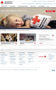 The 100 Best Nonprofit Website Designs of 2015 | Donation Dreams