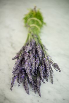 French Larkspur: Farm to Table