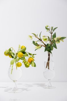 Fabrica design a new limited edition glass collection for Please Do Not Enter.
