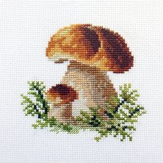 Sticken King Bolete Cross Stitch Kit Bridal Lingerie on Your Wedding Night Article Body: Is your wed Cross Stitch Quotes, Cross Stitch Art, Cross Stitch Borders, Modern Cross Stitch Patterns, Cross Stitch Animals, Counted Cross Stitch Kits, Cross Stitch Flowers, Cross Stitch Embroidery, Cat Cross Stitches