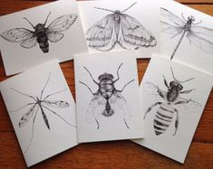 Insect art blank cards, Cicada art card, thank you cards, Dragonfly art cards, gallery wall decor, Bee card, greeting cards, birthday cards