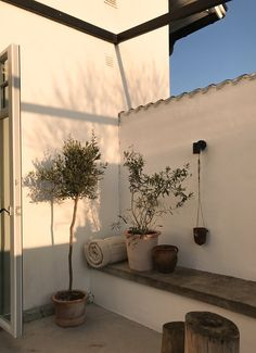 Olive tree and bush. Design Patio, Exterior Design, House Design, Outdoor Spaces, Outdoor Living, Outdoor Decor, Pergola, Home Modern, Back Patio