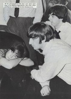 John Lennon, Paul McCartney and Ringo Starr in their dressing room. Ringo Starr, Beatles Love, Beatles Photos, Beatles Funny, Beatles Art, George Harrison, Liverpool, Music Rock, John Lennon Paul Mccartney