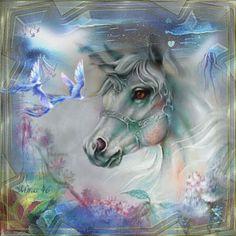 unicorn Unicorn Fantasy, Unicorn Art, Fantasy Art, Beautiful Unicorn, Beautiful Horses, Unicorn Pictures, Amazing Pics, Mythical Creatures, Mystic