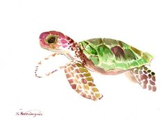 Baby Sea Turtle Painting, 12 X 9 in, original watercolor, one of a kind, green pink pruple wall art, children art