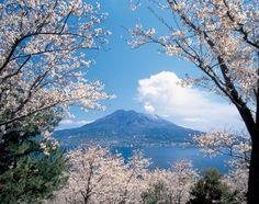 Sakurajima, Kagoshima 鹿児島の桜島