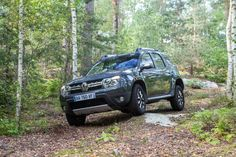 Renault Duster in the forest