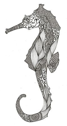 linework seahorse  @Maridon Bradley Beutler