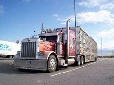 Custom Peterbilt Show Trucks | ... 36 55 views 2238 category trucks and customized big rigs copyright c