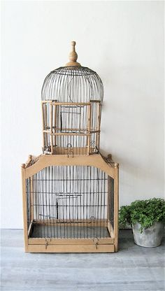I really want one for outside with a layern and planter : Vintage Tall Wood Wire Birdcage Antique Bird Cages, The Caged Bird Sings, Bird Feathers, Beautiful Birds, Bird Houses, Decoration, Modern Design, Shabby Chic, Antiques