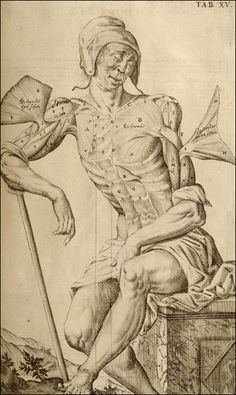 Tabulae Anatomicae...  Venice, 1627. Copperplate engraving. National Library of Medicine.  Giulio Casserio (ca. 1552-1616) [anatomist]  Odoardo Fialetti [artist]  Casserio's models evoke distinctive yet familiar personalities, an attempt at realism with a hint of comic exaggeration.