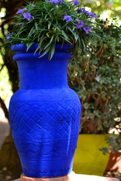 Jardin Majorelle, Marrakech on Beautyvanity Moroccan Garden, Moroccan Theme, Marrakech, Container Plants, Container Gardening, Garden Inspiration, Color Inspiration, Cement Garden, Glass Photography
