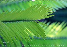 Es grünt! - CALVENDO Kalender - http://www.calvendo.de/galerie/es-gruent/ - #green #nature #photography #naturfotografie #kalender