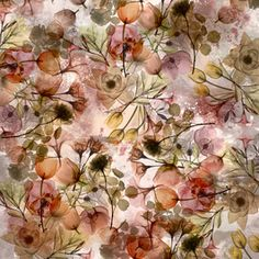 View Sheer Florals Floral Design by Pattern Atelier. Available in Royalty-Free. Fall Winter, Autumn, Surface Pattern Design, Mother Nature, Floral Design, Seasons, Wilderness, Philosophy, Florals