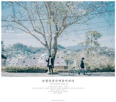 Life Is Beautiful, Beautiful Places, Cool Pictures, Beautiful Pictures, Kobe Japan, Dream Anime, Aesthetic Painting, Ulzzang Couple, Avatar Couple