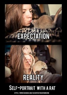 Yeah, that's pretty much how it goes XD. So true the girls won't stay still unless they have a treat