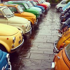 Image may contain: car and outdoor Fiat 500x, Fiat Cinquecento, Fiat Abarth, Fiat Panda, Retro Cars, Vintage Cars, Fiat 126, Automobile, Fiat Cars