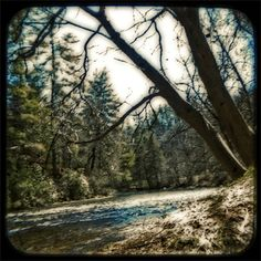 Toccoa River (ttv photo) by Jodi Hersh  This is a TTV photograph of a Toccoa River bank in Blue Ridge, GA. It was shot with a digital SLR camera looking through the viewfinder of a vintage Argus twin lens reflex camera and post-processed in Photoshop.