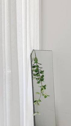 Best Home Plants Plant Aesthetic, Aesthetic Rooms, White Aesthetic, 90s Aesthetic, Aesthetic Pastel Wallpaper, Aesthetic Backgrounds, Aesthetic Wallpapers, Plant Wallpaper, Screen Wallpaper