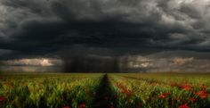 Storm - Photography by Tamás Hauk
