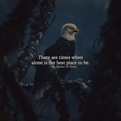 Positive Quotes : There are times when alone is the best place to be. - Hall Of Quotes Alone Quotes, Reality Quotes, Wisdom Quotes, True Quotes, Words Quotes, Motivational Quotes, Inspirational Quotes, Sayings, Qoutes