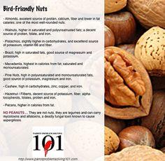 Bird Friendly Nuts