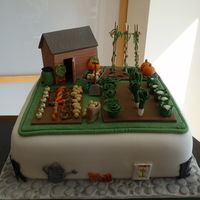 Allotment garden cake with shed for a retirement Vegetais