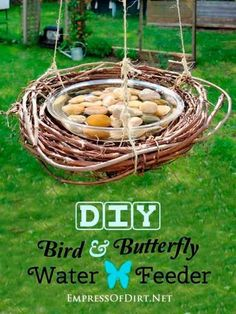 Comedero con agua para pájaros y mariposas