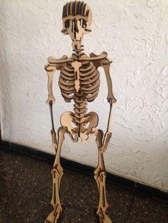 como hacer esqueleto humano - Buscar con Google