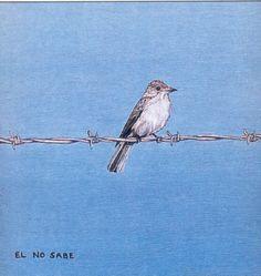 El no sabe - Ethel Gilmour Miguel Angel, Film Director, Oblivion, Animals, Google, Art History, Pictures, Illustrations, Drawings