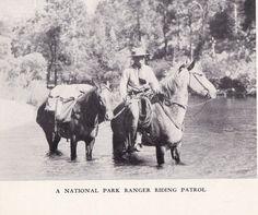 """National Park Ranger riding patrol."""