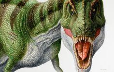 Tyrannosaurus rex by EsthervanHulsen on deviantART