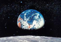 Сколько стоит планета Земля? Узнай прямо сейчас! #лайфхаки #технологии #вдохновение #приложения #рецепты #видео #спорт #стиль_жизни #лайфстайл