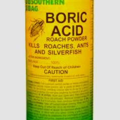 Kill ants indoors...not a great option for those with kids or pets. Keep out of their reach.  Combine 1tsp of boric acid with 2 c bait. Mix thoroughly. Put in caps, on foil pieces, in cut pieces of straws, etc where you see ants along baseboards and in corners.   Choose bait type dependent on what variety of ants you have. Bait ideas: peanut butter, jelly, sugary soda, corn syrup, 3 tbsp sugar in 2 c water, powdered sugar.