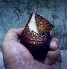 "Snake(skin) fruit or ""salak"" (Salacca zalacca). Non-poisonous. Safe to eat."